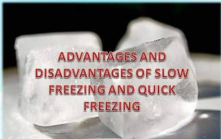 Slow freezing versus fast freezing.jpg